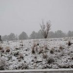 A snowy field- Photo by Johnnie Daniels